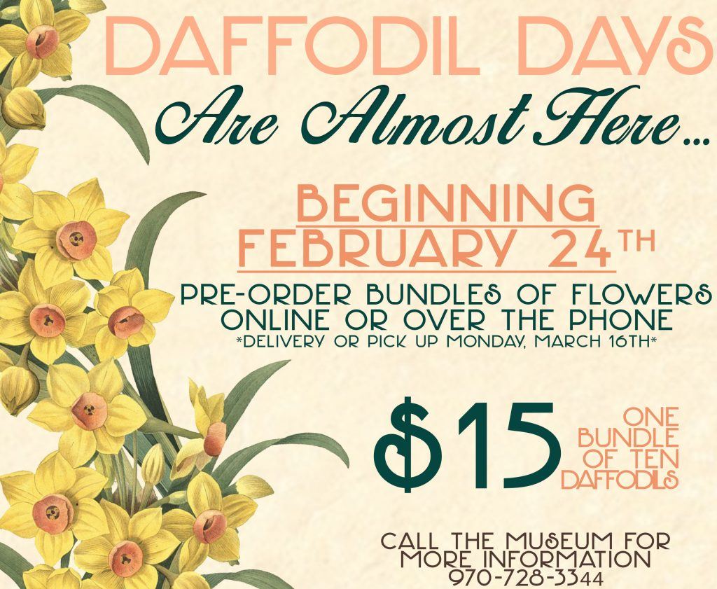 2020 Daffodil Day Pre-Sale Email